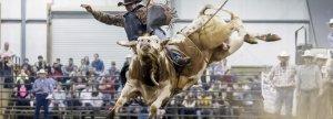 Sundance Arena Rodeo