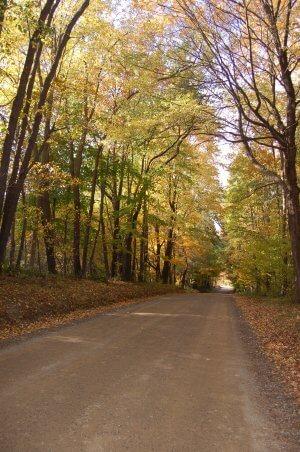 Fall Backroads, Fall Foliage Tours