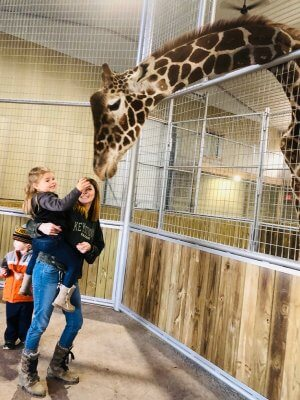 Grove City, PA safari park opens for the first time to the public